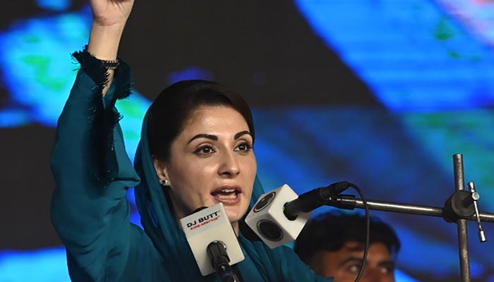 PML-N's Maryam Nawaz slams Pak govt for 'incompetence, corrupt practices'