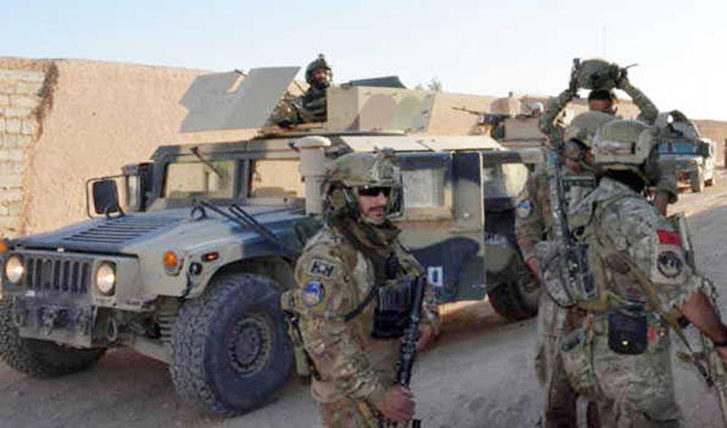 Afghan forces kill 28 Taliban terrorists in Uruzgan, Kandahar provinces