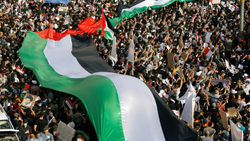 'It's genocide': Protesters slam Israel, support Palestinians