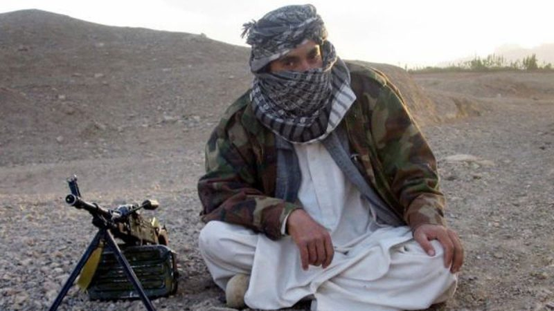 What is the difference between the Taliban and Isis?