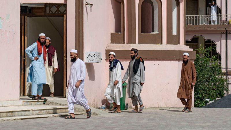 'No longer 'the University of jihad' but the University of the Taliban cabinet': inside Pakistan's notorious madrasa